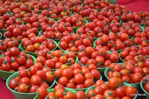 tomatoes-in-baskets